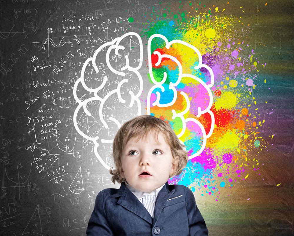 Ejercitar hemisferios cerebrales