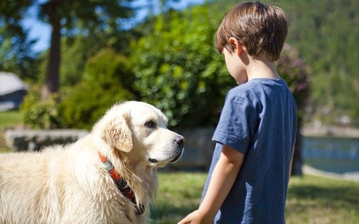 Perros para niños con autismo