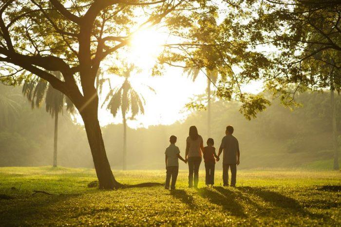 Cómo debe ser el ambiente familiar para un niño hiperactivo