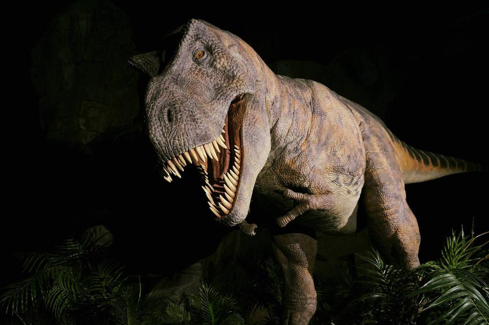 Descubre Dónde Ver Dinosaurios En España