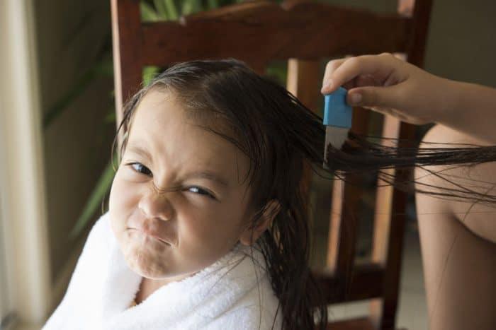 Cómo eliminar los piojos en los niños de forma natural