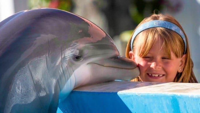 Miami con niños