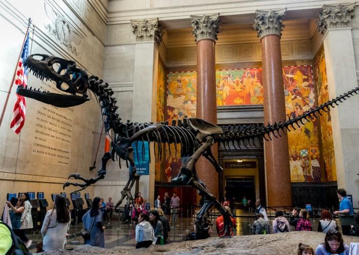 Museo Americano de Historia Natural, en Nueva York