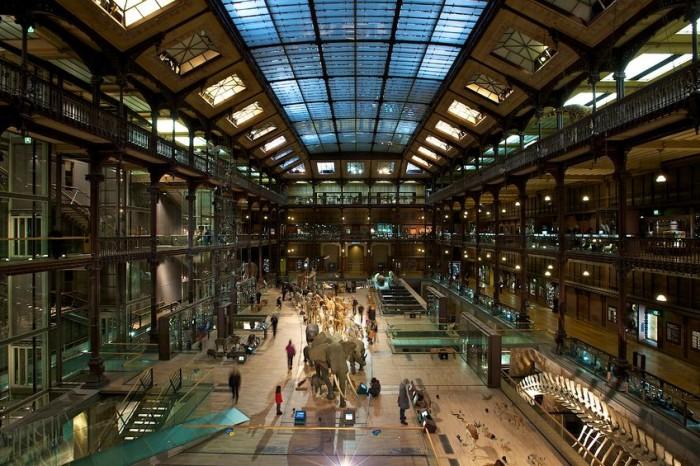 Museo de Historia Natural en Paris