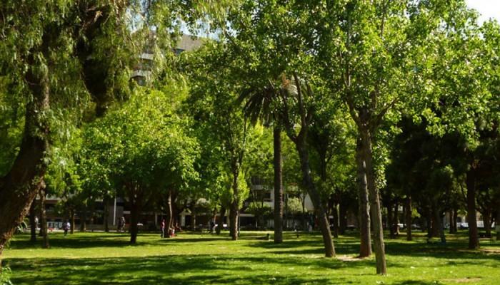 Pradera verde en Turó Park
