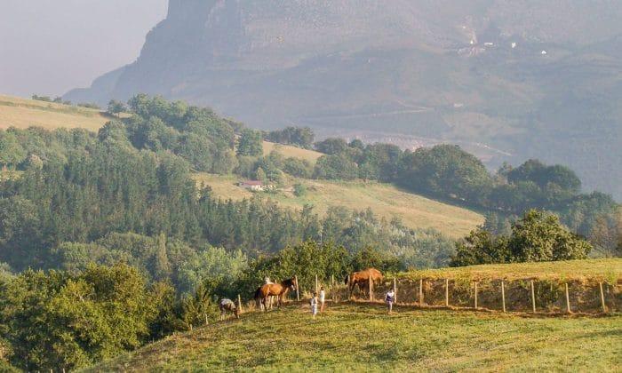 Valle de Carranza, en Vizcaya