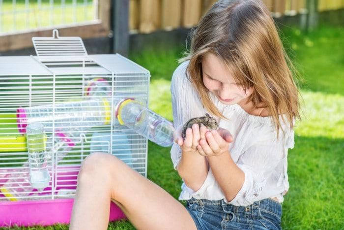 H%C3%A1mster y ni%C3%B1os e1452526726350 - Las cinco mejores mascotas para los niños