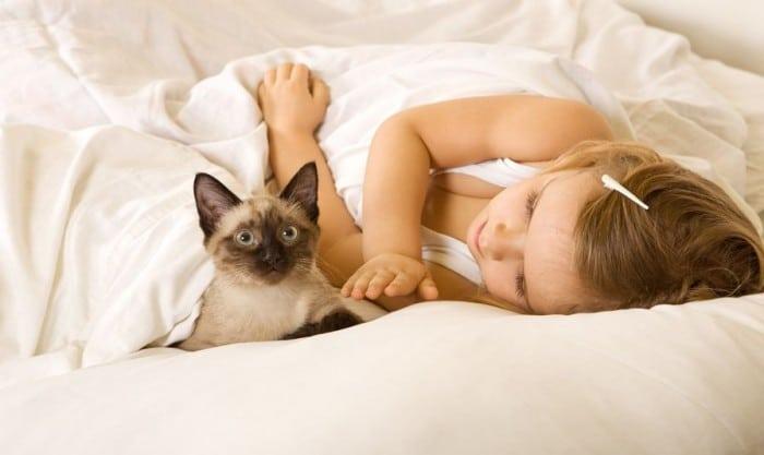 gatos y ni%C3%B1os e1451813006404 - Las cinco mejores mascotas para los niños