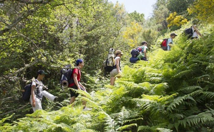 Campamento de verano Natuaventura, en Burgos