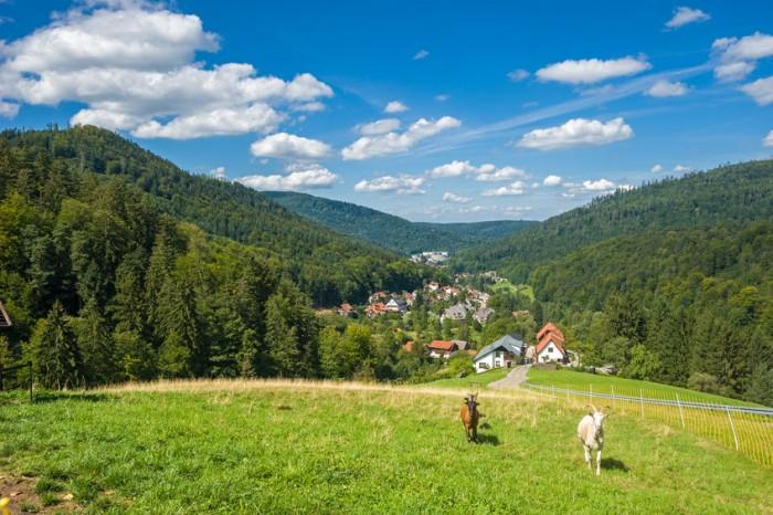 Escapada Selva Negra en Alemania con niños