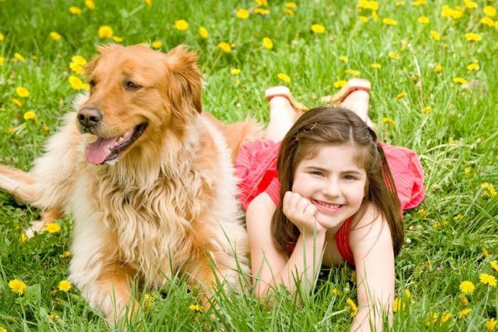 Mascotas niños hiperactivos