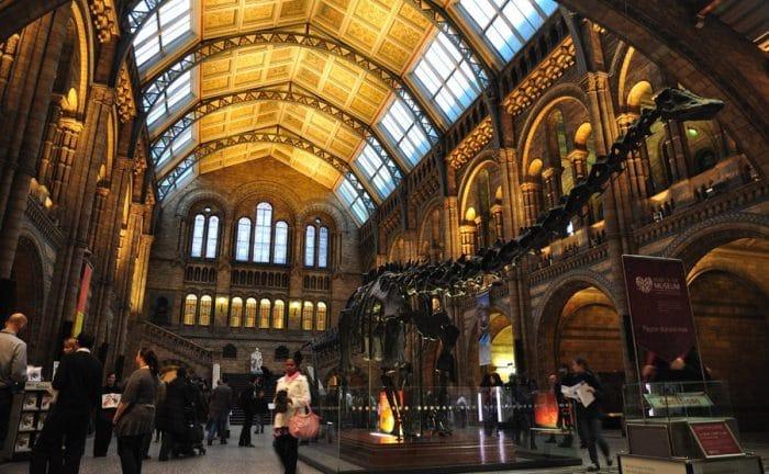 Museo de Historia Natural, en Londres