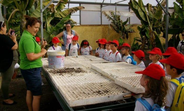 Granja Centro Ecológico Los Olivos, en Islas Canarias