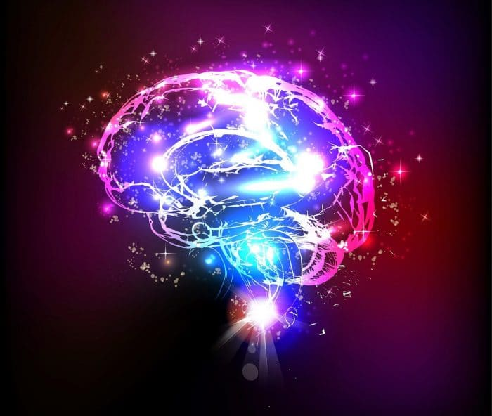 Que pasa en nuestro cerebro cuando nos enfadamos