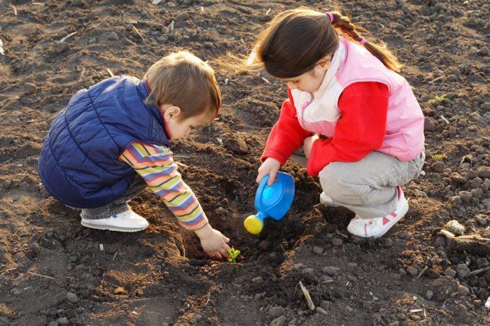 Experiencia niños cultivar