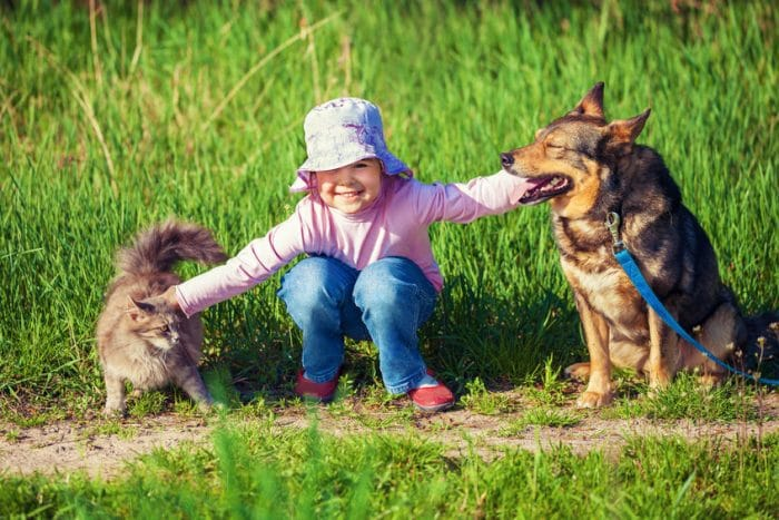 Mascotas para niños con autismo
