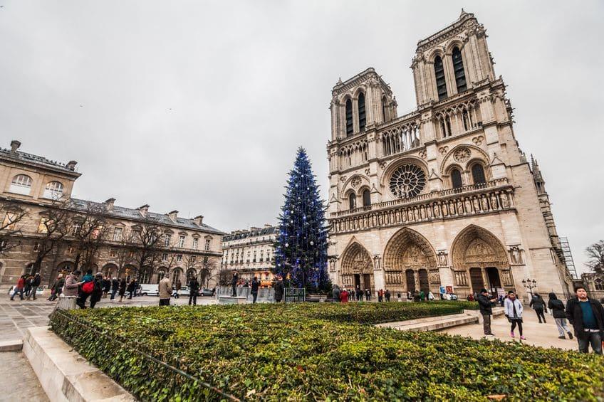 Árbol de Navidad en laCatedral de Notre-Dame, en París