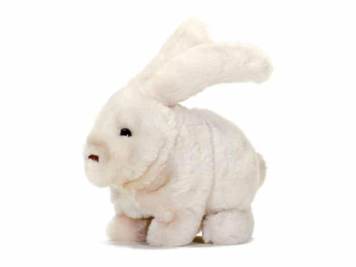 Juguete infantil autismo Conejo animado