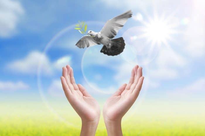 Celebrar el Día de la Paz con niños