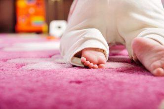 Gateo estimula desarrollo habilidades lectoescritura niños