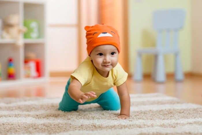 Gateo importante desarrollo infantil