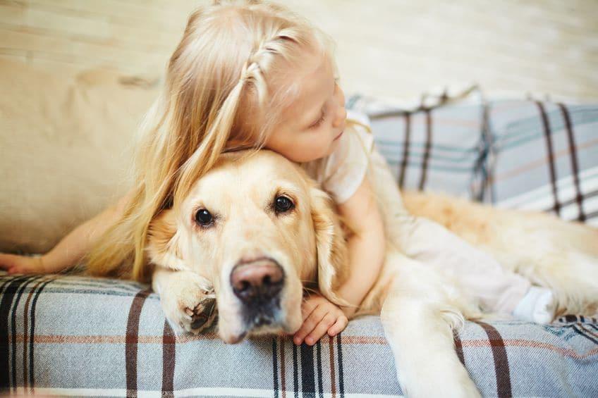 Las emociones infantiles y caninas comparten una base muy similar
