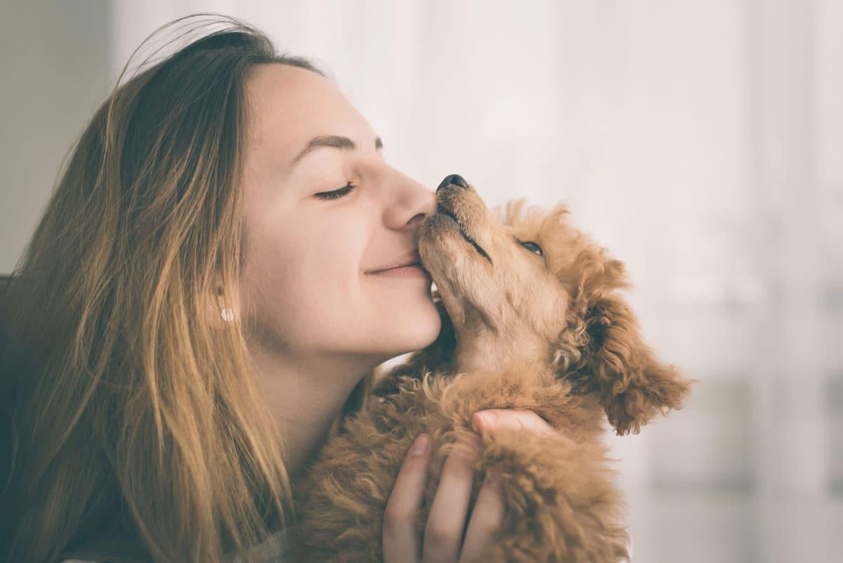 Emociones en los perros