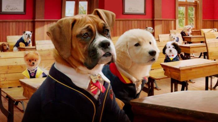 Serie familiar Netflix Escuela de cachorros