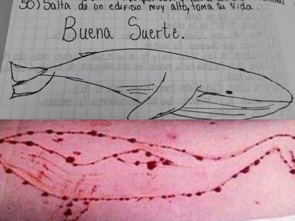 la ballena azul retos del juego