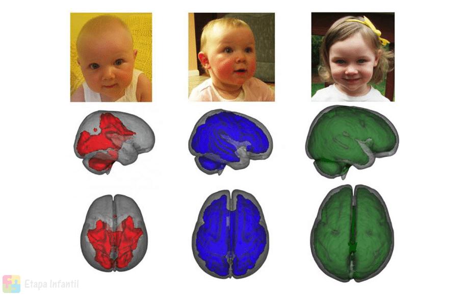 La lactancia materna beneficia el cerebro de los niños
