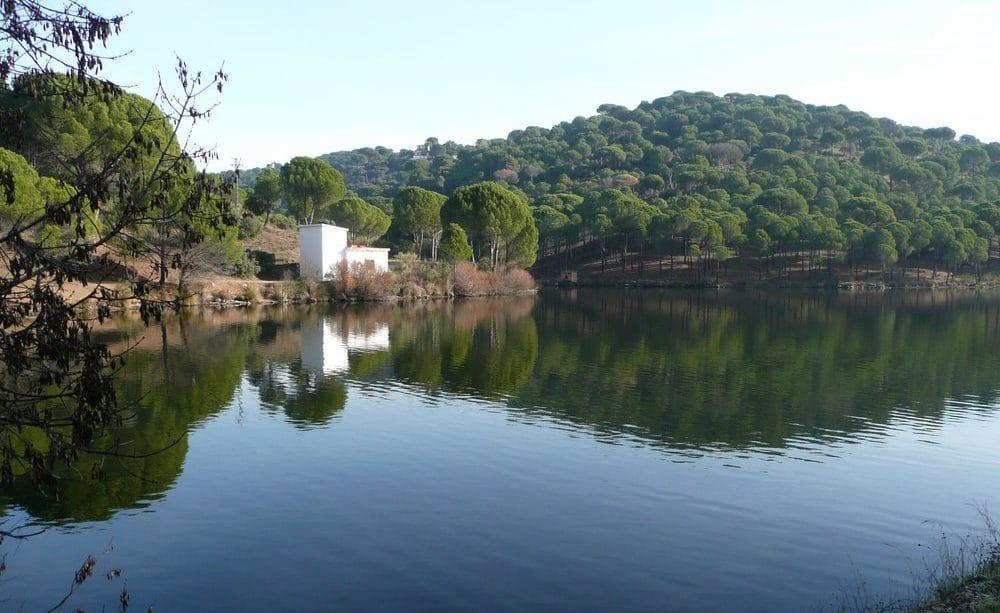 Piscina natural Embalse de Picadas, en Pelayos de la Presa, en Madrid