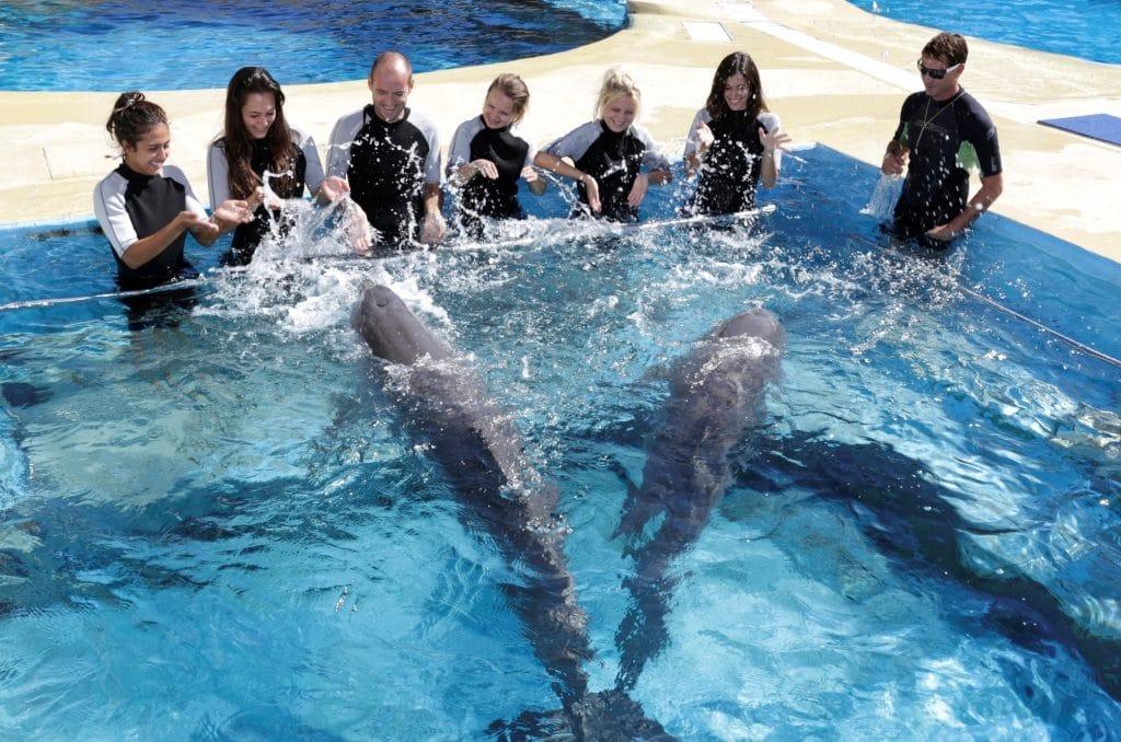 Delfines Aquopolis Costa Dorada, en Platja de la Pineda, Tarragona