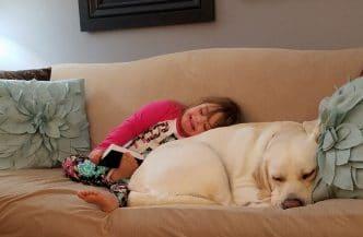 Sadie y Hero, niña con Síndrome de Down y su perro labrador