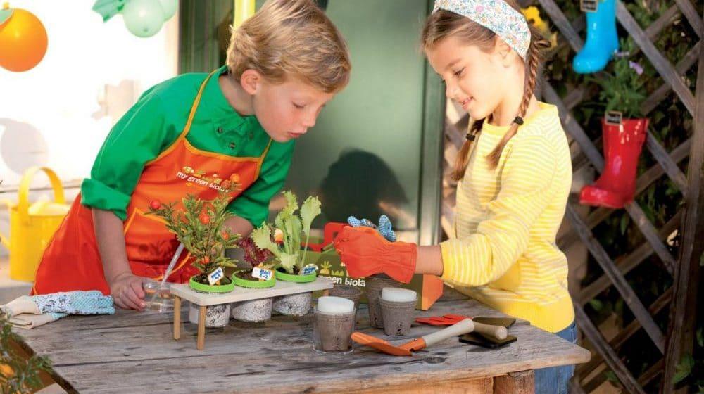 Kit de huerto infantil: Todo lo que los niños necesitan para hacer un huerto urbano