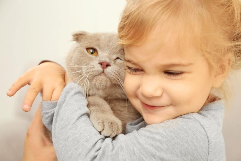 Gatoterapia: Las ventajas para los niños de vivir con un gato ...