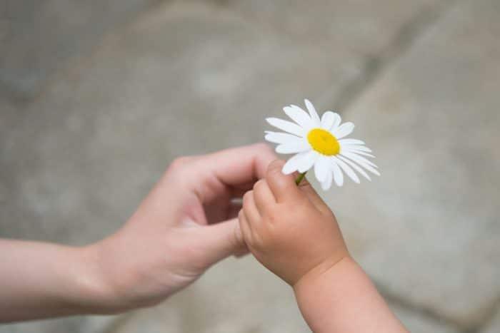 niños agradecidos