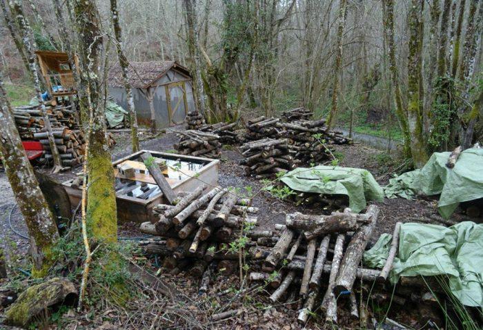 Turismo sostenible Asturias