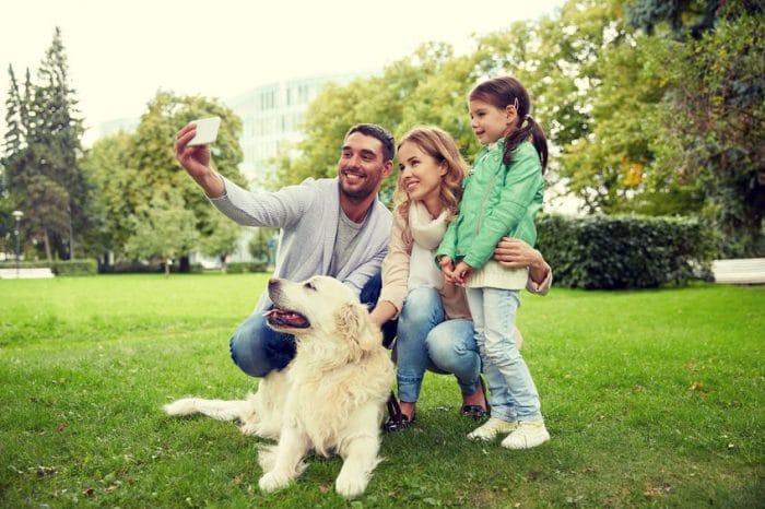 empatía perros
