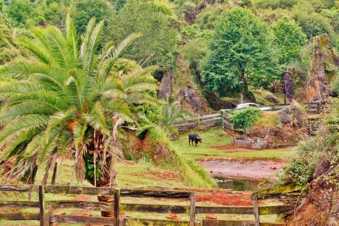 Visitar el Parque de la Naturaleza de Cabárceno con niños