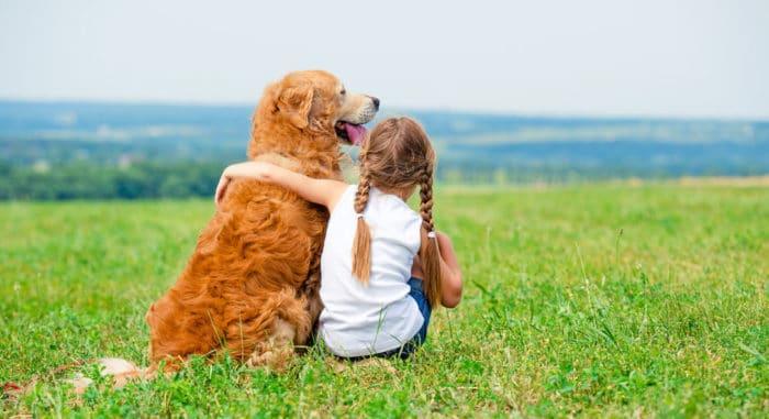 beneficios mascotas salud mental niños