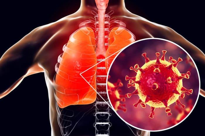 COVID-19 sistema inmunológico
