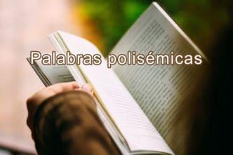 palabras polisemicas