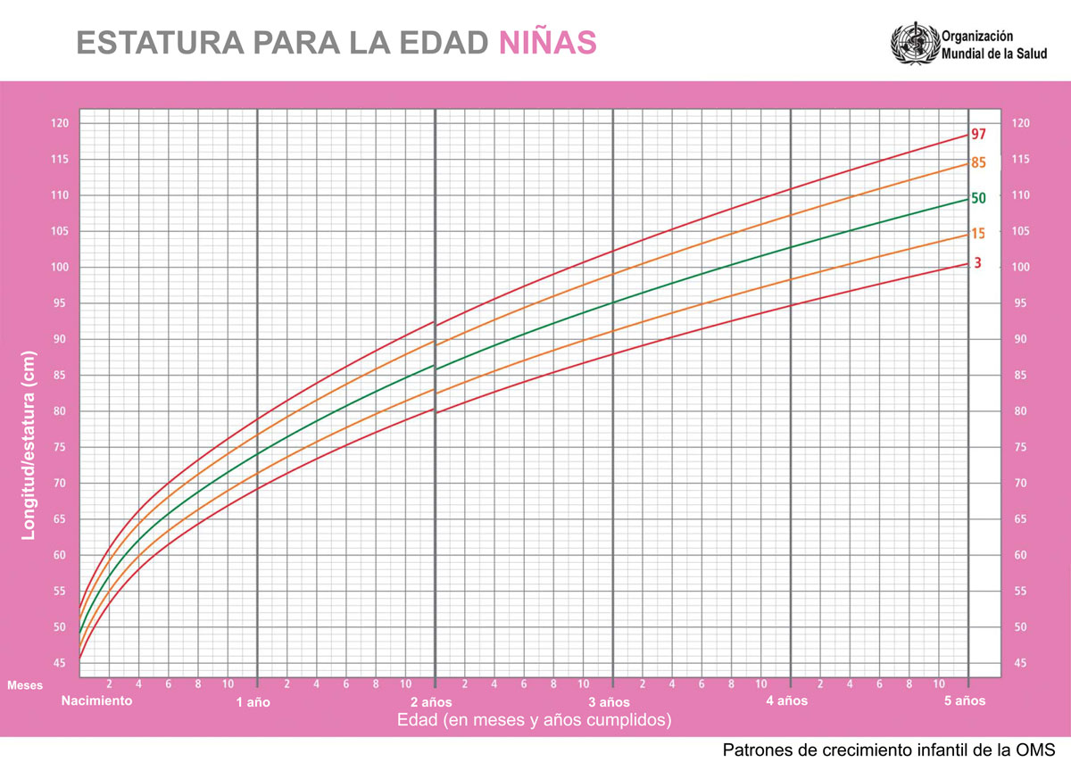 Percentiles de estatura / talla para la edad niña OMS
