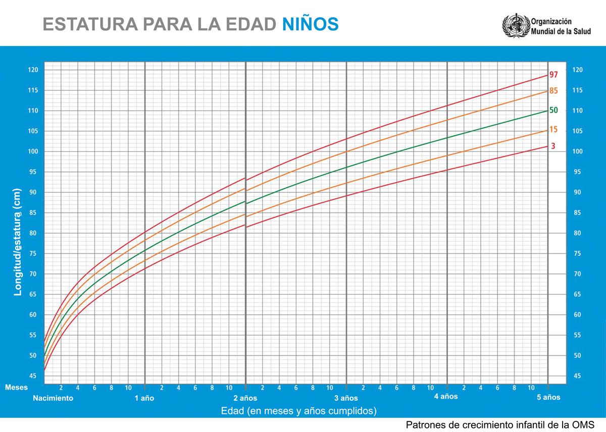 Percentiles de estatura / talla para la edad niño OMS