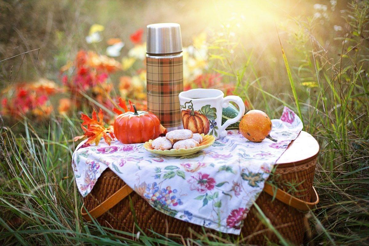 Alimentación saludable al salir de pícnic
