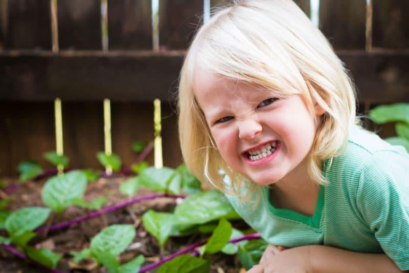 ¿Es posible que un niño de 1 a 3 años sea agresivo?