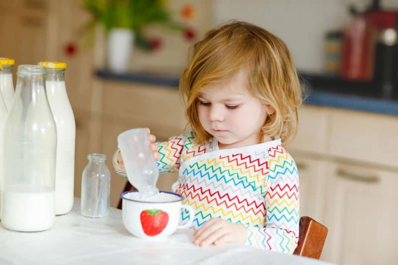 ¿Qué tipo de leche debe tomar el niño a partir del año de vida?