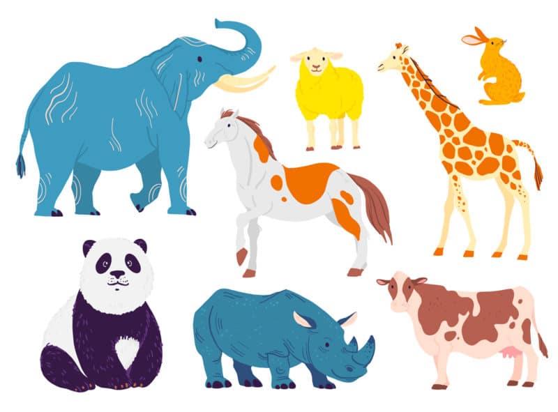 Ejemplos de animales herbívoros