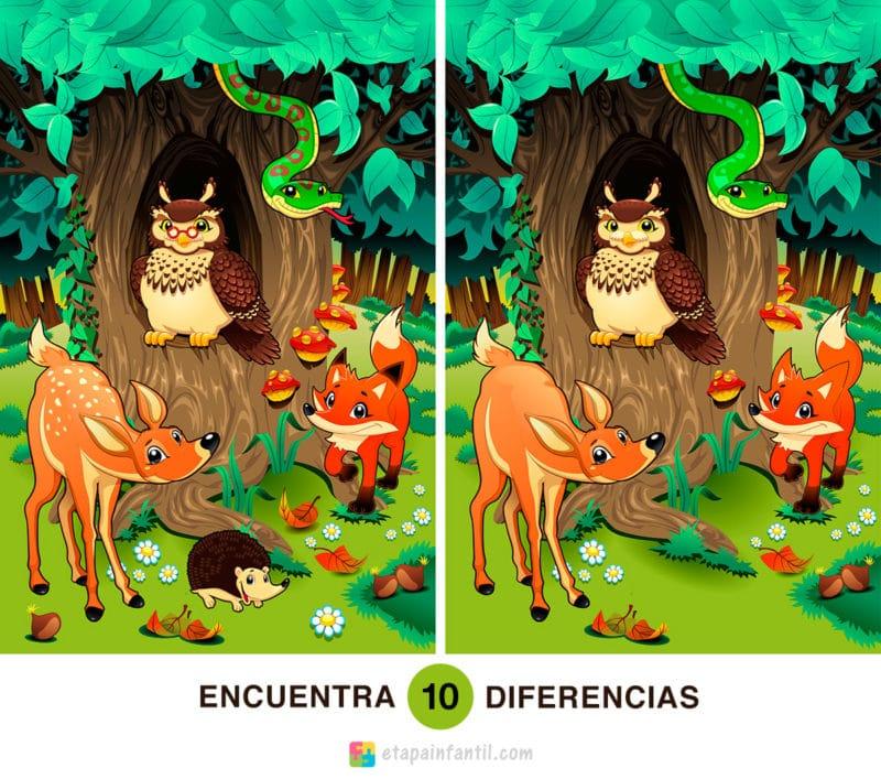 Encuentra las 10 diferencias: Animales en el bosque