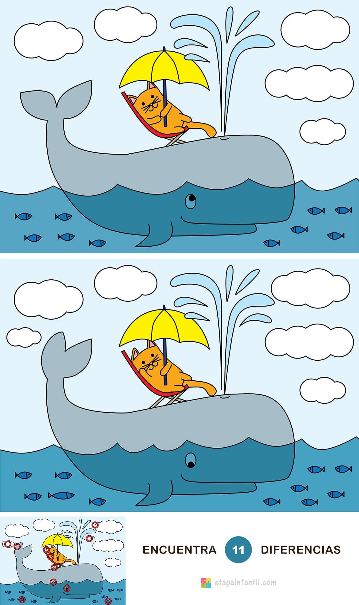 Encuentra las 11 diferencias: Gato tomando el sol sobre una ballena